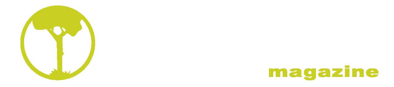 L'Alfas Magazine